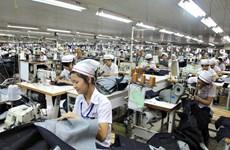 越南努力提高纺织品服装和鞋类与皮革制品在欧洲市场的竞争力