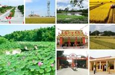 宁平省拨出近2.3万亿越盾用于新农村建设