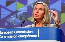 欧盟公布与东盟加强安全合作计划