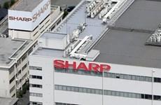 日本电子公司夏普将生产线转移到越南