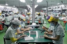 300家越南企业参与跨国公司的生产网络