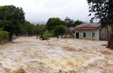 第三号台风:越南政府总理指导各部委和地方政府立即开展救灾工作