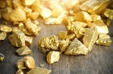 8月6日越南黄金价格接近4100万越盾