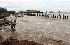 坚江省遭强降雨袭击  经济损失可达逾770亿越盾