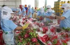 越南专家:中美贸易冲突再度加剧对越南出口产生不少影响