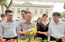 河内市打造近730条安全食品供应链