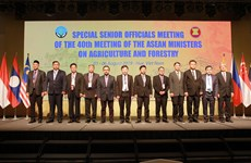 第18届东盟与中日韩农林部长会议在越南承天顺化省举行