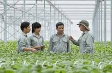 2030年越南有农技培训需求的人数预计达600万