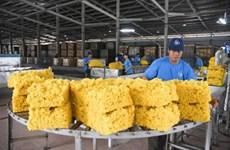 2019年前7个月越南橡胶出口额同比增长4.5%