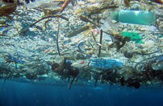 越南制定关于2030年前减少海洋塑料垃圾的国家行动计划