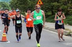 9000多名运动员参加2019年岘港国际马拉松比赛
