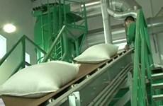 泰国大米价格高于亚洲其他国家供应国