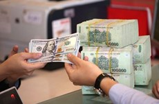 8月15日越盾对美元汇率中间价下调6越盾
