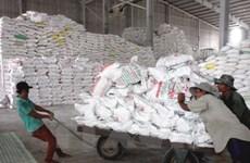 中国大米需求趋于冷清导致越南大米价格下降