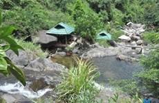 岘港生态旅游模式让游客沉浸于大自然的景色中