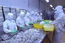 2019年Vietfish:越南与世界企业家进行合作的桥梁