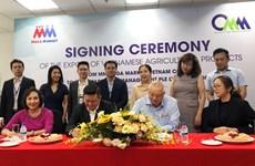 MM Mega Market(越南)公司今年9月向新加坡出口首批农产品