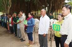 越南边防部队向越柬边境地区贫困户赠送牛苗
