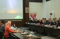 胡志明市希望与印尼加强在应对气候变化等方面的合作