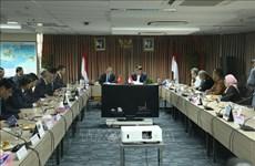 胡志明市促进与印度尼西亚各合作伙伴的全面合作