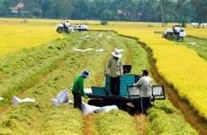 加大对农业的投资力度  为农业发展注入新动力
