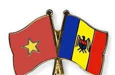 越南驻乌克兰大使出席乌克兰国独立28周年庆典