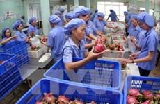 今年前8月越南农林水产品贸易顺差达60多亿美元