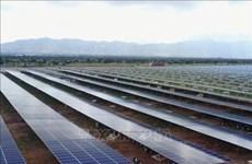 俄罗斯企业赴越南宁顺省寻找热电厂发电项目投资机会