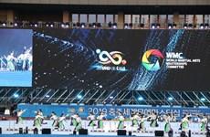 越南参加2019年忠州武艺大赛武术比赛