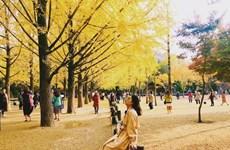 韩国在越开展首尔旅游推介活动