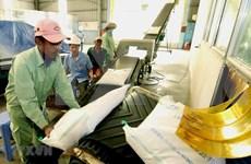 2019年前8月越南大米出口额达20亿美元