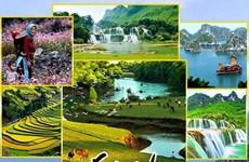 深化越南与各重要市场的旅游合作