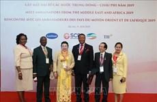 进一步深化越南与中东和非洲地区各国的传统友好合作关系