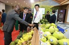 中东和非洲地区——越南企业的潜在市场