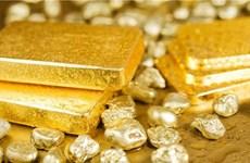 9月10日越南黄金价格下降55万越盾