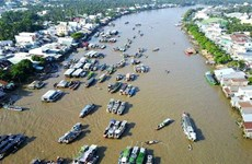 加强有关各方在越南与湄公河流域水电磋商过程中的作用