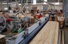 保证林产品原产地高透明度和可追溯性