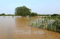 德国协助越南实现水资源的可持续管理