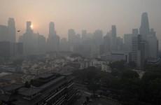 """新加坡空气质量降至""""不健康""""水平"""