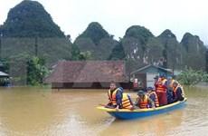 越南应注重有效应对自然灾害