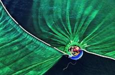 越南摄影家黎文荣作品《富安渔民》获得人与自然组冠军