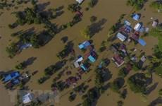 政府总理阮春福泰国遭受台风杨柳袭击向泰国领导人致慰问电