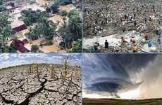 性别数据对自然灾害和气候变化风险管理的重要性