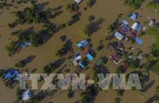泰国8月底至今洪灾致34人死