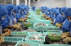 2019年前8月越南虾类出口额达19.3亿美元