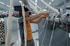 大叻羊毛纱线纺纱厂首次向日本出口天然羊毛纤维