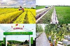 越南即将召开国家新农村建设目标计划实施10周年总结会议