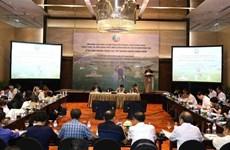 越南奶牛养殖业发展潜力巨大