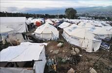 印尼帕卢地震海啸后一年 近6万人仍住在临时住所
