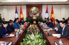 越南国会主席阮氏金银同老挝国会主席巴妮举行会谈